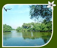 Bharatpur Lake